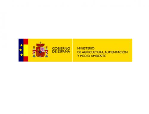 Publicados los datos del total de superficie de viñedo plantada en España