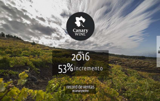 canary wines 16
