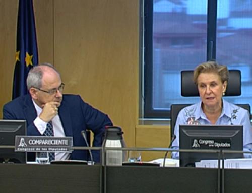 La CECRV (Conferencia Española de Consejos Reguladores del Vino) reivindica en el Congreso la diferenciación del Vino y propone medidas para eliminar el consumo de alcohol en menores