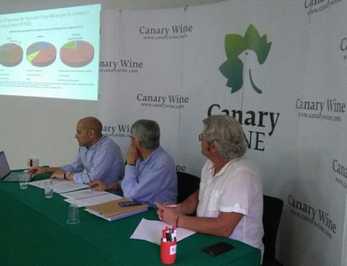 Canary Wines renueva su Junta Directiva