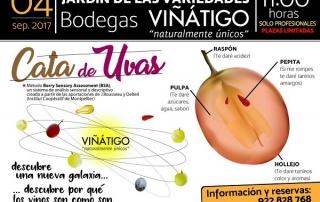 Cartel cata uvas y Vinos 2017
