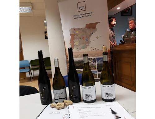 Pequeñas D.O.'s presenta los vinos asturianos a los Sumilleres de Cantabria