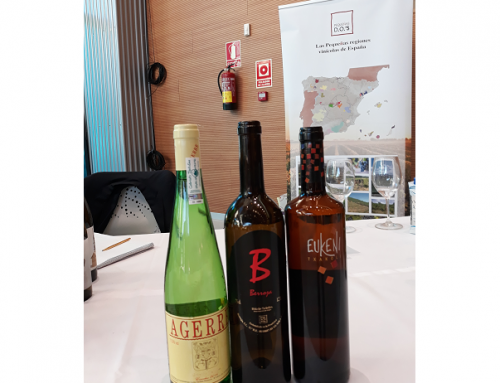 Los sabores del Norte y del Sur van de la mano en la 2ª edición del Salón Wine Experience de la Costa del Sol