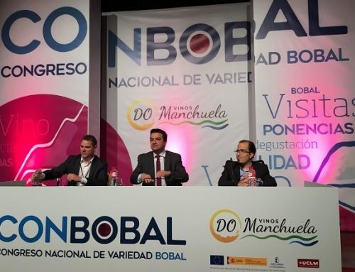 La DO Manchuela reúne al sector del vino en su congreso ConBobal