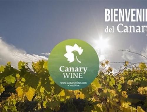 Canary Wines e Ycoden Daute Isora sacan su oferta formativa para el 2018