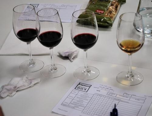 Resultados del 2º Concurso Nacional de Vinos de Pequeñas D.O.'s