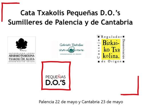 Pequeñas D.O.'s presentará los txakolis vascos en las Asociaciones de Sumilleres de Palencia y Cantabria