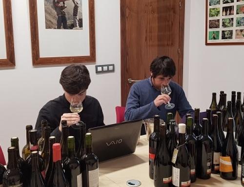 Los vinos de la Pequeña DO Ribeira Sacra sorprenden a los catadores de la Guía Peñin