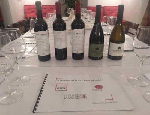 Los vinos de la Pequeña DO Vinos de Madrid se presentan en La Caja de Vinos