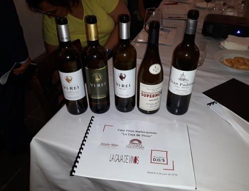 Pequeñas D.O.'s presenta los vinos de Mallorca