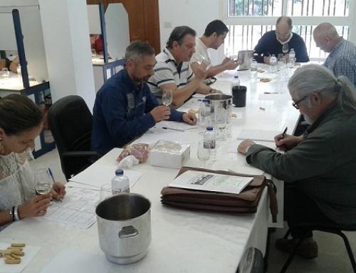 Los sumillieres de Galicia examinan los vinos de la Pequeña DO Valdeorras