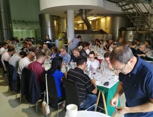 Gran éxito de la 7ª edición Master Class de vinos y uvas canarias en Bodegas Viñatigo
