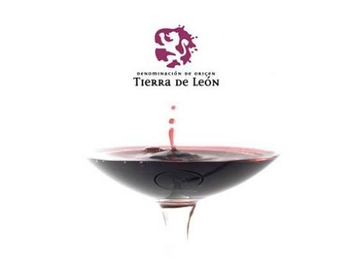 La Pequeña DO Tierra de León convoca un concurso de fotografía sobre vitivinicultura y enoturismo