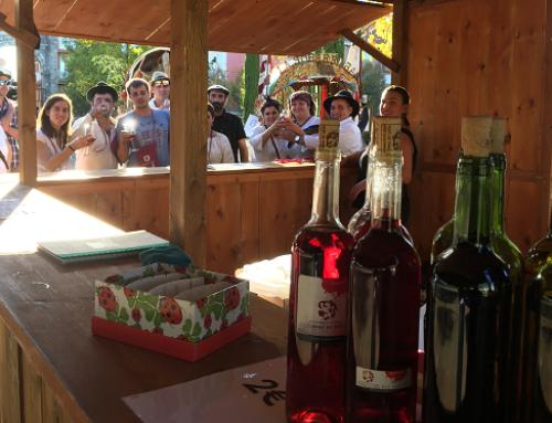 La Pequeña DO Tierra de León lleva sus vinos a la popular romería de San Froilán