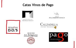 23-11-18 cata vinos de pago