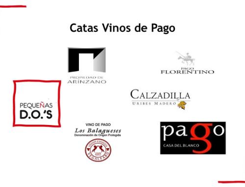 """Pequeñas D.O.'s acerca el concepto """"Vino de Pago"""" a los sumilleres de Córdoba y Cádiz"""