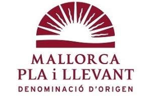 logo DO PLA I LLEVANT 14.fh11