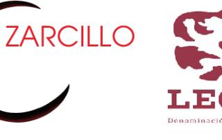 21-1-19 logo-zarcillo