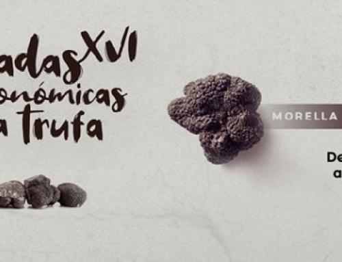 La Pequeña DO Terra Alta marida sus vinos con trufa de Morella