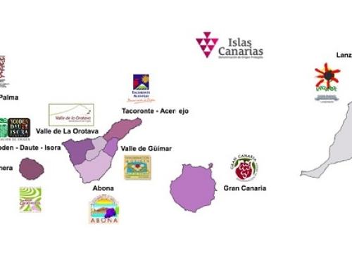 Las once Pequeñas D.O.'s canarias, participan en el Curso de Análisis Sensorial de Vinos de La Laguna