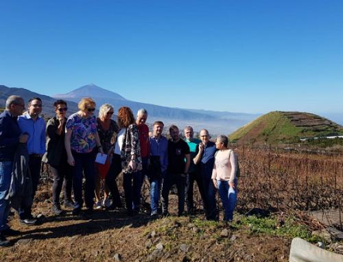 Los Masters of Wine visitan la Pequeña DO Tacoronte Acentejo