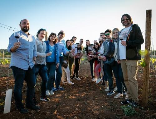 La Pequeña DO Binissalem y Wine Days consiguen más de 2,4 millones de impactos en las redes gracias al blog trip Somdemallorca