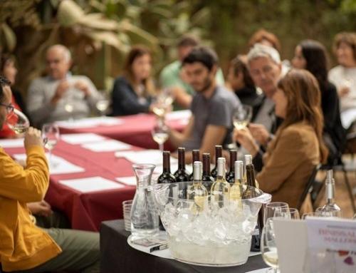 Curso de cata en la Pequeña DO Binissalem dentro de la LV edición de la Fiesta de la Vendimia