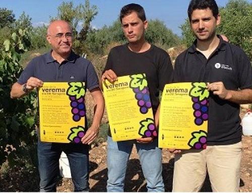La DO Tarragona impulsa la 1ª Fiesta de la Vendimia entre los días 27 y 29 de septiembre