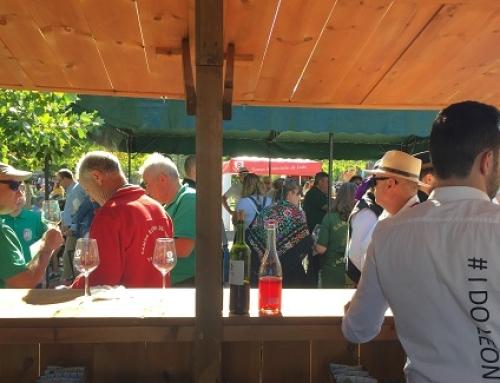 La Pequeña DO León participa desde hoy en la primera Feria del Vino en el Camino Francés