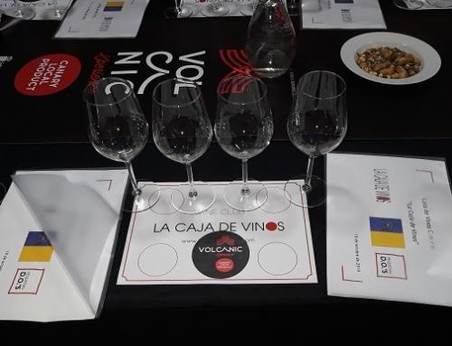 La Caja de Vinos acoge esta tarde una cata de vinos canarios con Volcanic Xperience