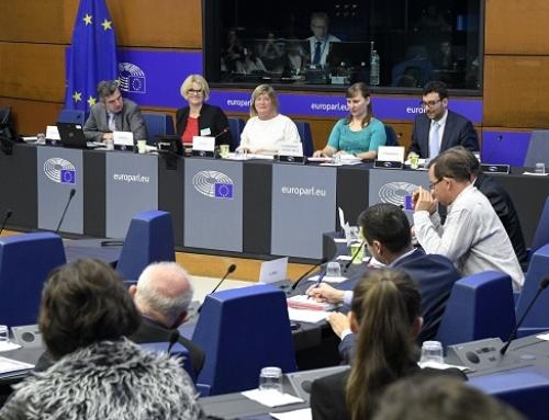 La CECRV (Conferencia Española de Consejos Reguladores de Vino) valora positivamente la renovación del grupo intervino