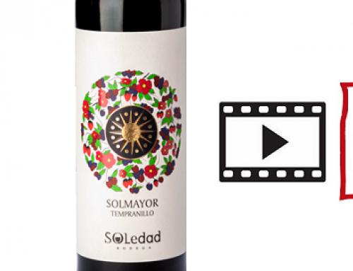 Hoy video cata con Solmayor Joven de Bodegas Soledad de la Pequeña DO Uclés