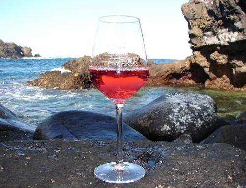 La Pequeña DO Tacoronte Acentejo recomienda este verano el consumo de sus vinos