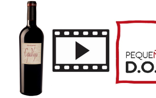 8-6-20 vinos de madrid