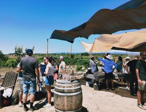 Buena aceptación en el inicio de la campaña enoturística de verano de la Pequeña DO Tarragona con 'Nuestra viña su patio trasero'