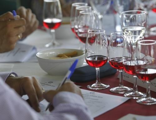"""Los vinos de la Pequeña DO León vuelven a alcanzar el """"excelente"""" en la añada 2019"""