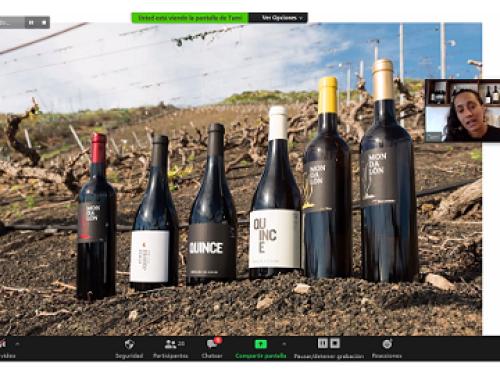 El Comité de cata de la Pequeña DO Gran Canaria imparte formación online a las bodegas sobre la Ruta del Vino de Gran Canaria
