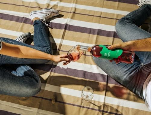 Los vinos de la Pequeña DO Manchuela reciben numerosos premios este verano