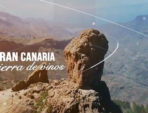 La Pequeña DO Gran Canaria presenta hoy su video promocional