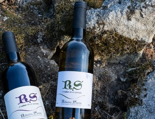 Hoy recibe la Pequeña D.O. Ribeira Sacra los premios de la Cata de los Vinos de Galicia