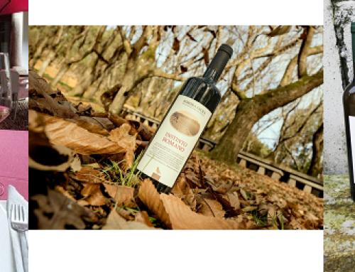 3 fotos ganan el Concurso de Vino y Fotografía organizado a través de Facebook por la Pequeña DO Ribeira Sacra