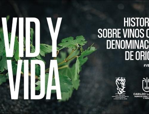 "La Pequeña DO La Palma comunica la 2ª entrega de la serie documental ""Vid y Vida"""