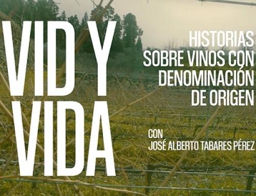 Presentamos la 4ª entrega del documental VID y VIDA de la Pequeña DO La Palma