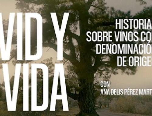 """La 5ª entrega de """"VID y VIDA"""" de los documentales de la Pequeña DO La Palma se hace en honor a la mujer trabajadora"""