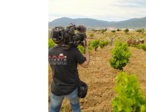 Espectacular video promocional de la Pequeña DO Cebreros para dar a conocer su patrimonio vitivinícola