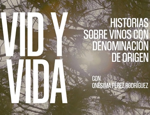 """Nueva entrega del documental """"VID y VIDA"""" de la Pequeña D.O. La Palma"""