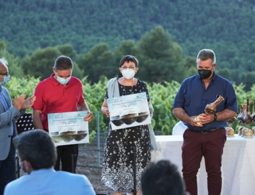 Un GRAN ORO, diez OROS y seis PLATAS en la XIV edición del Concurso de los vinos de la Pequeña DO Bullas