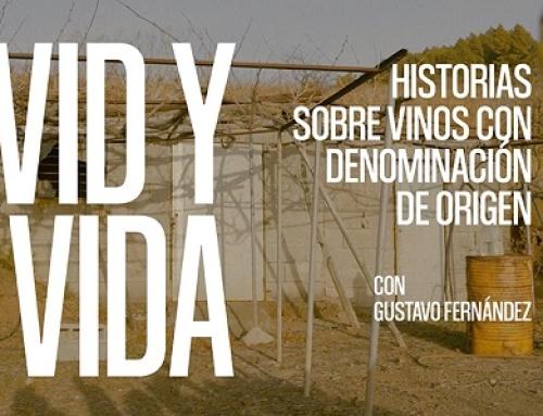 """Hoy 15ª entrega de """"VID y VIDA"""", historias de la Pequeña DO La Palma"""