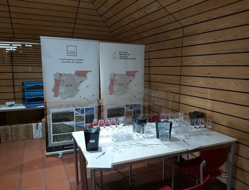 El Aula Española del Vino acoge hoy la 5ª edición del Concurso Nacional de Vinos de Pequeñas D.O.'s