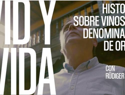 """Ultimo capítulo de """"VID y VIDA"""" de la Pequeña DO La Palma, hoy una bodega con sabor alemán"""